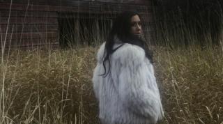Vanessa-Carlton-2011